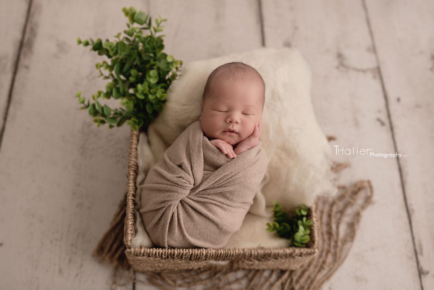 newborn boy sleeping in a basket decorated with greenery