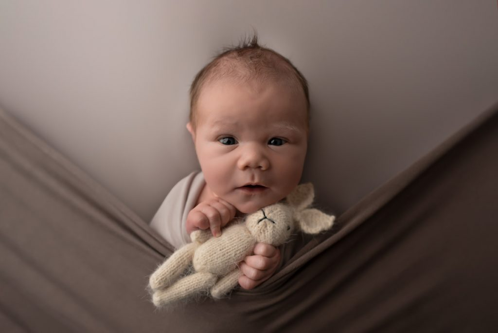 Newborn Baby boy looking at camera holding a little bunny taken by a photographer